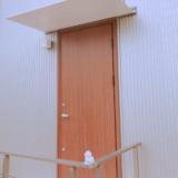 無印の木の家の玄関ドア:木目