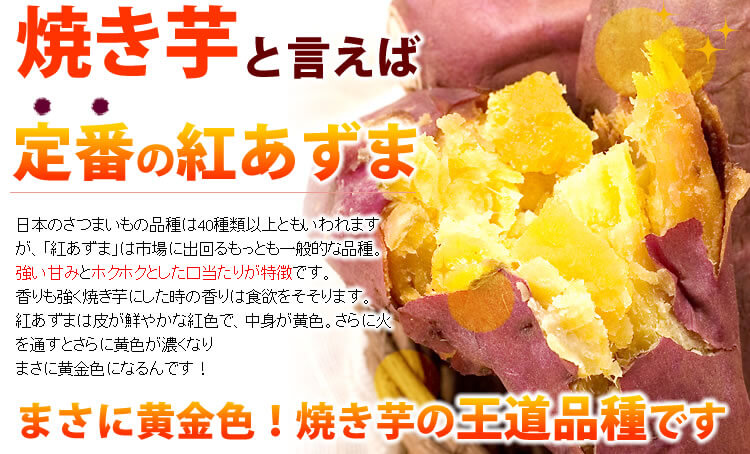 紅あずまの焼き芋