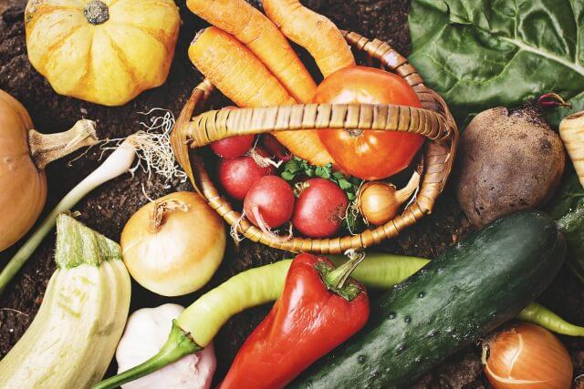 庭に植える野菜の種類