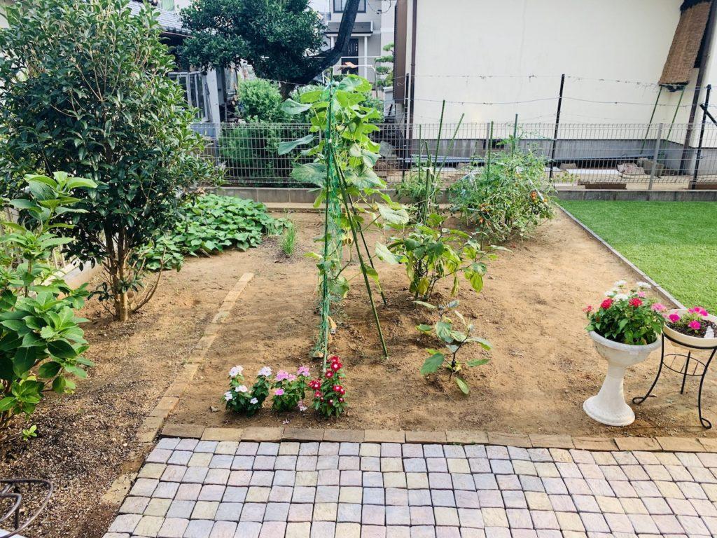 6年経った家庭菜園の畑