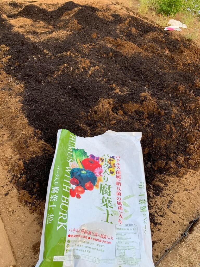 家庭菜園に必要な腐葉土を蒔いた