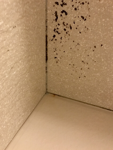 お風呂場の角の汚れ