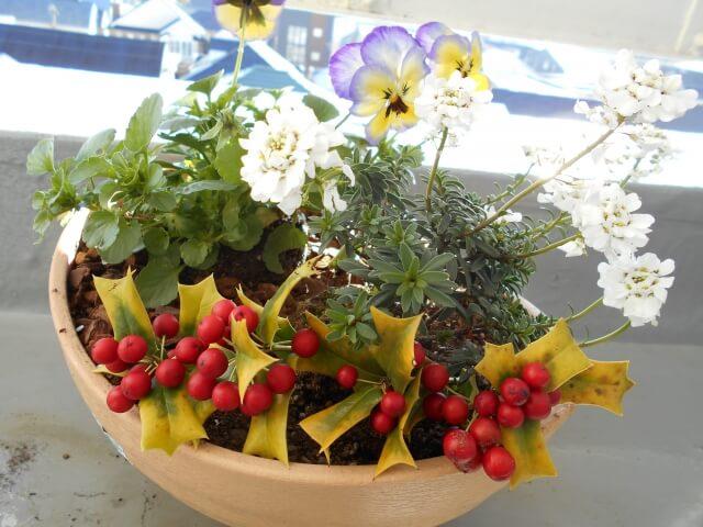 バークチップの植木鉢