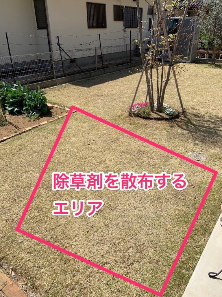 除草剤ラウンドアップを散布する芝