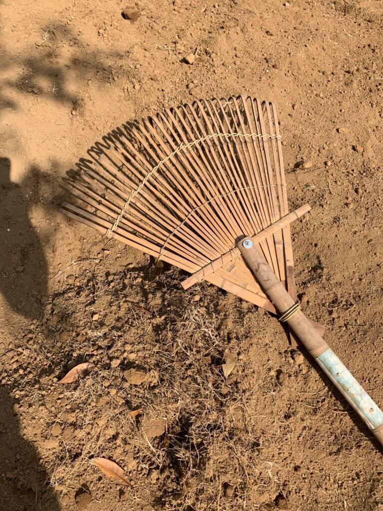 レーキで芝生の根を回収する
