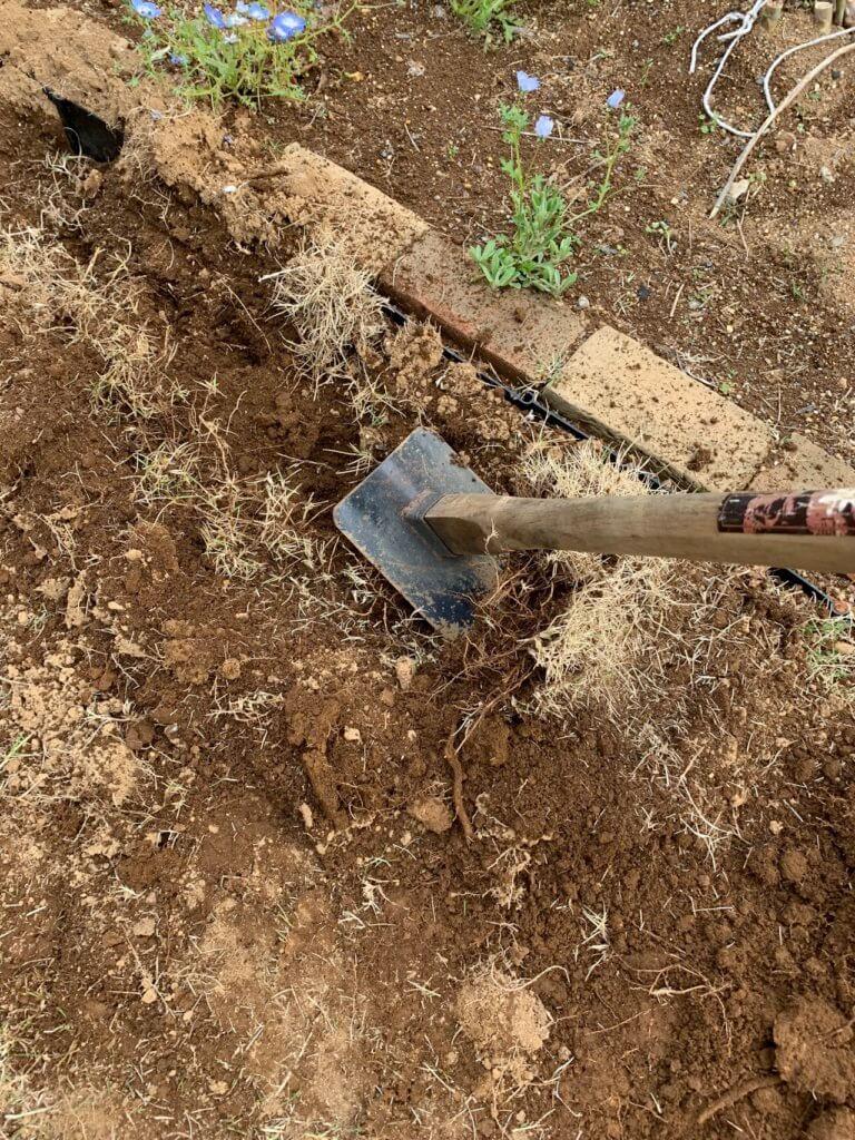 鍬を使って、芝を剥がす