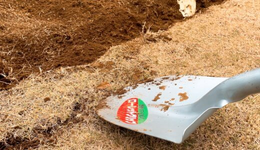 芝を剥がす方法と手順を詳しく解説。庭の芝生を家庭菜園の畑にしました