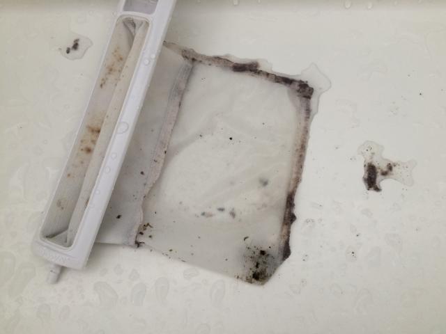 洗濯槽のゴミ取りのカビ
